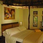 habitación Iguana