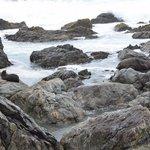 Seals on the rocks.