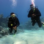 Divers at Sha'ab Marsa Alam