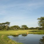 Stunning one acre plots for sale on the golf course.