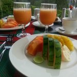 The breakfast and the view