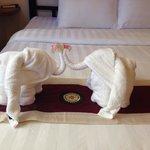Elephant towel folding :)