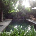 Villa Suite pool