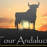 Tour Andalucia International - Day Tours