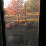 Fall colors outside room 221