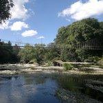 ..vista del famoso puente colgante