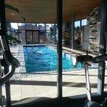 pool n gym