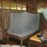 Photo of Mejia Lodge