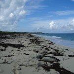 grande plage vers l'ouest
