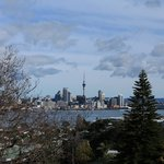 Auckland from Davenport