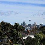 Auckland City landscape (Davenport)