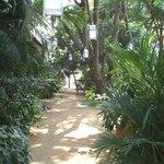 Le jardin vers le restaurant