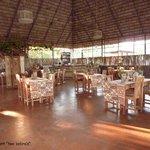 Two zebra's restaurant