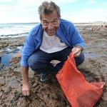 Au bord de l'ocean, ramassant les algues comestibles
