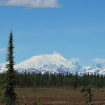 view from the south entrance of Denali Park