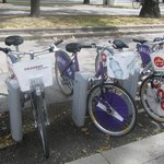 bicycles for rent