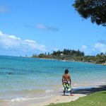 Baie des Citronnier : vue de la plage