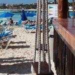 De härliga gungorna vid strandbaren