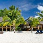 Etu Moana from the beach - Absolute Beachfront Villas