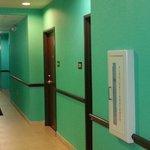 hall walls