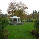 Attractive landscaped garden