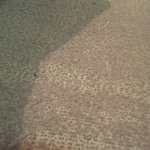 Threadbare carpets