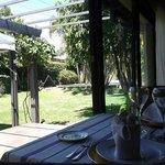Vista del jardín desde nuestra mesa