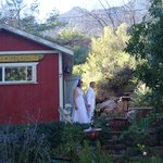 The bride and groom emerge from  the Garden Cabin