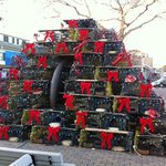 Lobster Pot Tree Decorated
