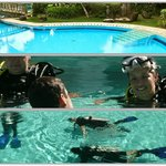 Discover Scuba Diving session in the pool