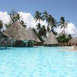 Zwembad & Poolbar