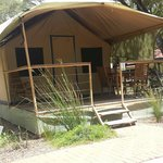 Safari tent bungalow @ $100 per night