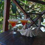 cocktails de bienvenu