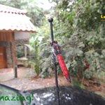 The small and large wildlife all around La Cusinga Lodge
