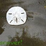 Discover, Explore, Enjoy at La Cusinga Lodge