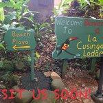 Welcome to La Cusinga