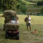 Haymaking on the farm