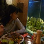 столик возле аквариума