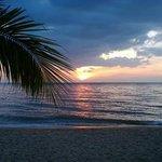 Sonnenuntergang am Casuarina