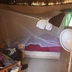 Chambre avec moustiquaire sale et trouée