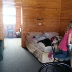 Family cabin with two bunks sleeping 5 in back room and queen in front with fridge and tv