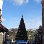 Christmas tree by lake Taneycomo