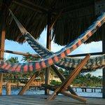 Palapa w/ hammocks