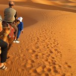 Dromedary Ride - must do it