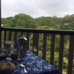 Breakfast with a friendly & well behaved kookaburra surely was a memorable experience! Thank you