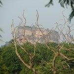 le piton rocheux de Sigiriya