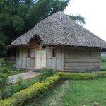 Dorm Cottage