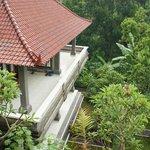 вид на соседний домик и садик во дворе