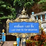 1237 steps...