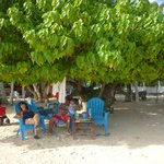Photo of The Grog Rocky Cay San Andres